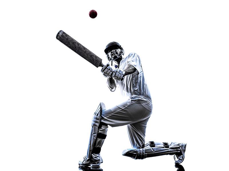 クリケット